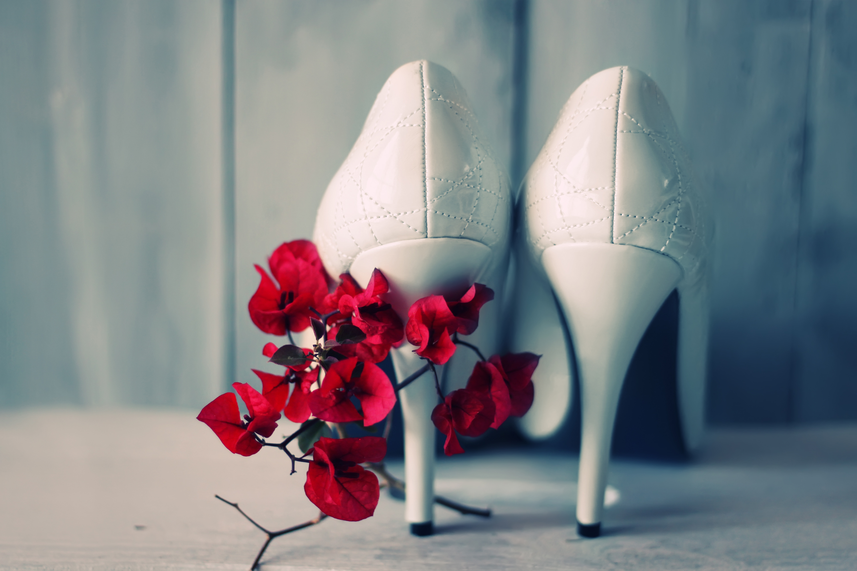 Shoes and flowers, love and luxury