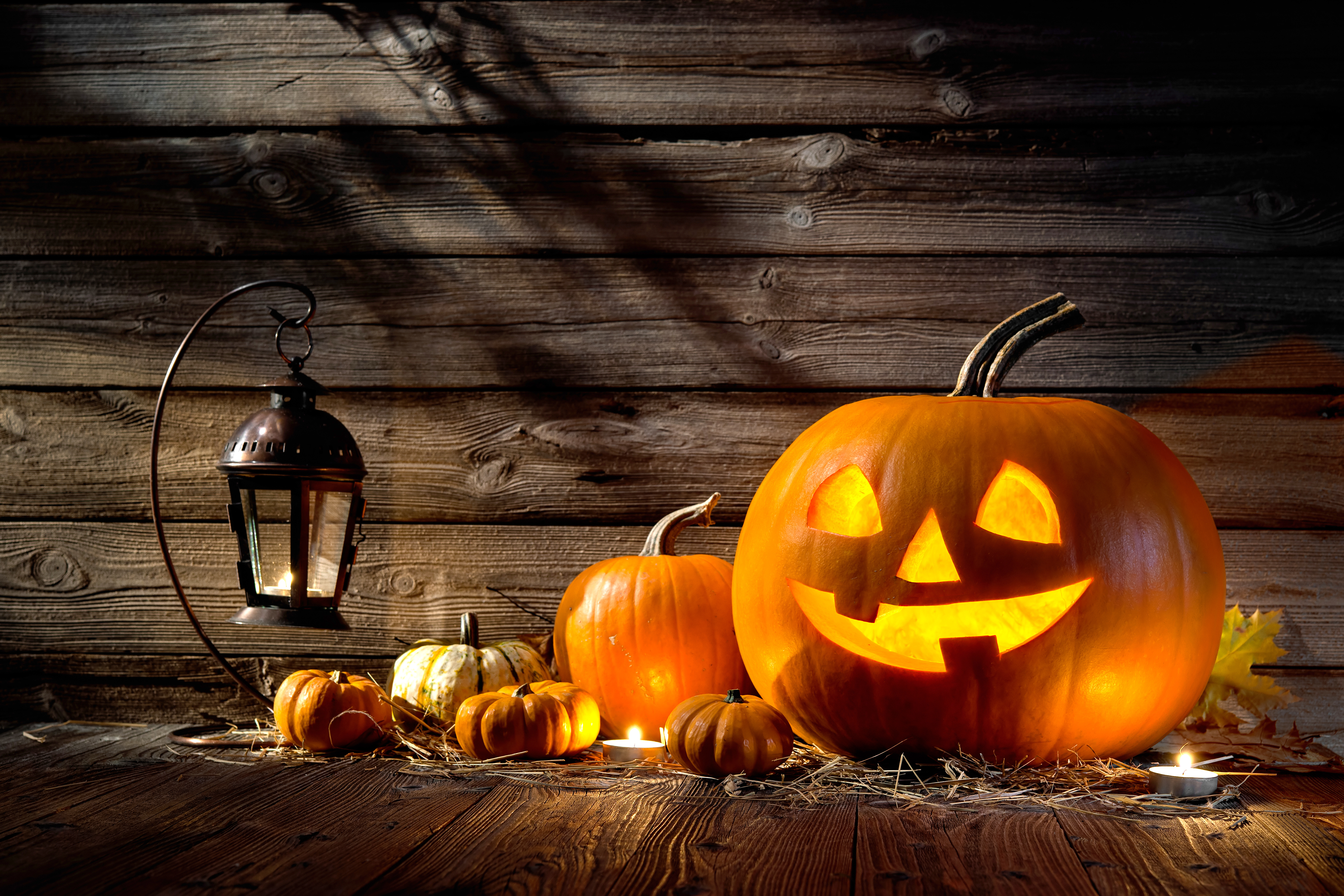 Halloween can be celebrated in luxury